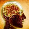Высокий уровень сахара в крови негативно влияет на память